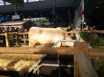 Paris International Agriculture Show, February 2020